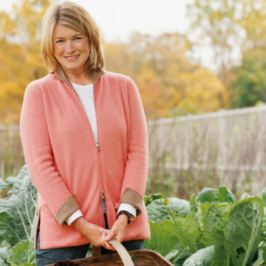 Mike's Organic Featured on Martha Stewart's Blog